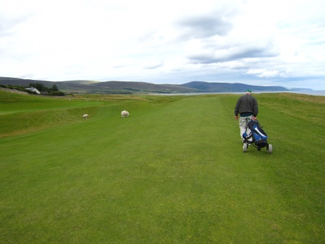 Golf in Scotland, with a mixed foursome