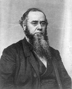 Portrait of Edwin Stanton by Matthew Brady