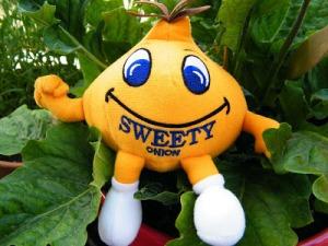 sweet onion 8