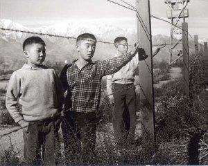 three boys_sm_jpg_490x999_upscale_q85
